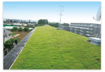屋上緑化・緑化施工例3|株式会...
